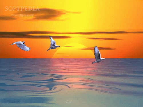 3D Ocean Sunset screenshot 1