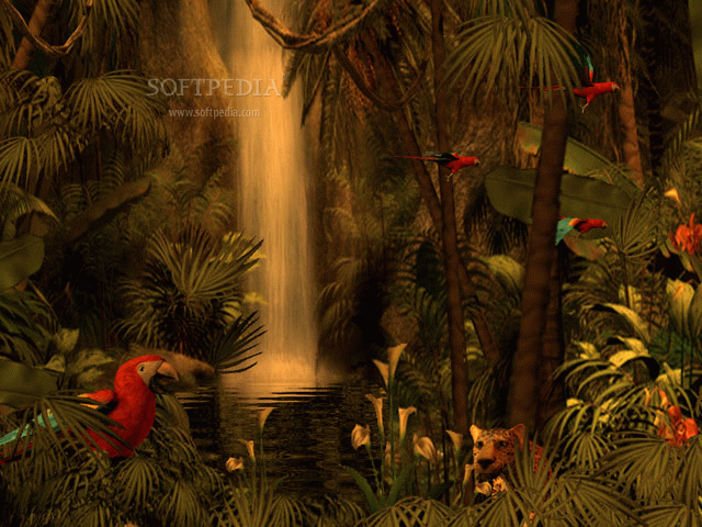 3d rain forest adventure 3d rain forest adventure is a full of life