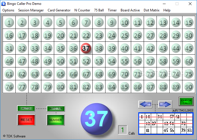 bingo software