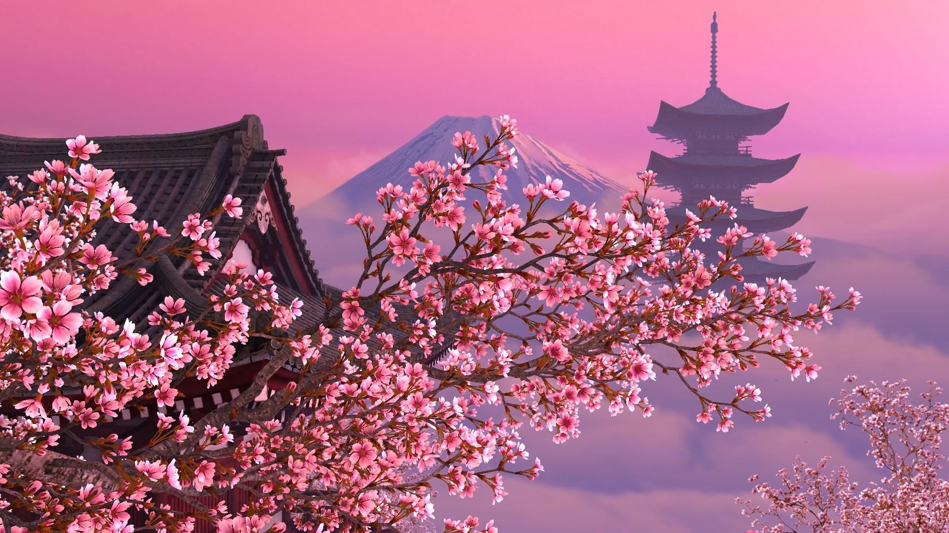 Blooming Sakura D Screensaver on 3d Card For Pc