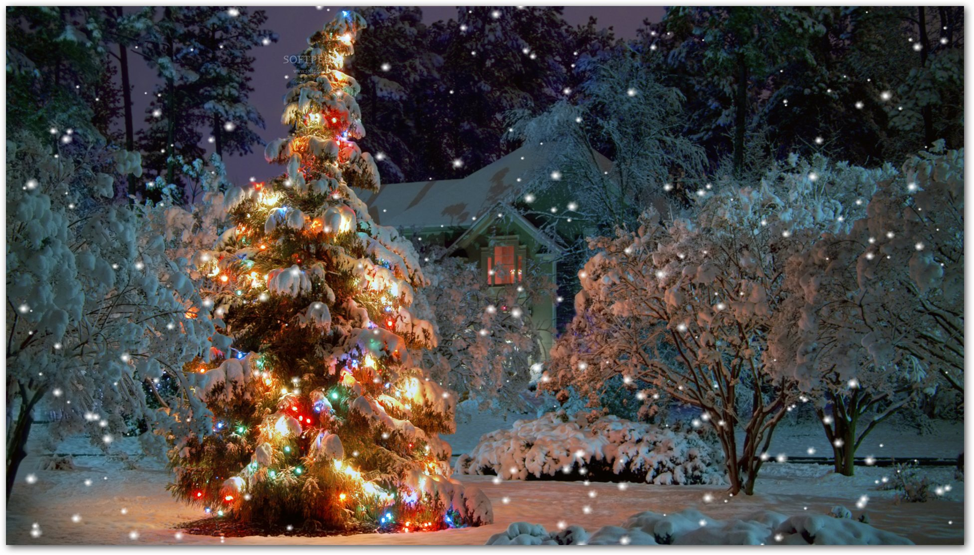 Christmas Serenity Screensaver - Have a beautiful Christmas tree on ...