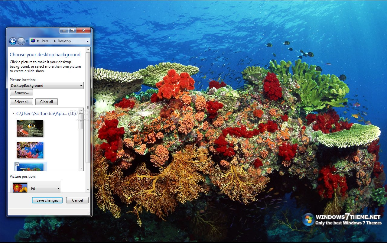 Download Coral Reef Windows 7 Theme With Sound 1 00