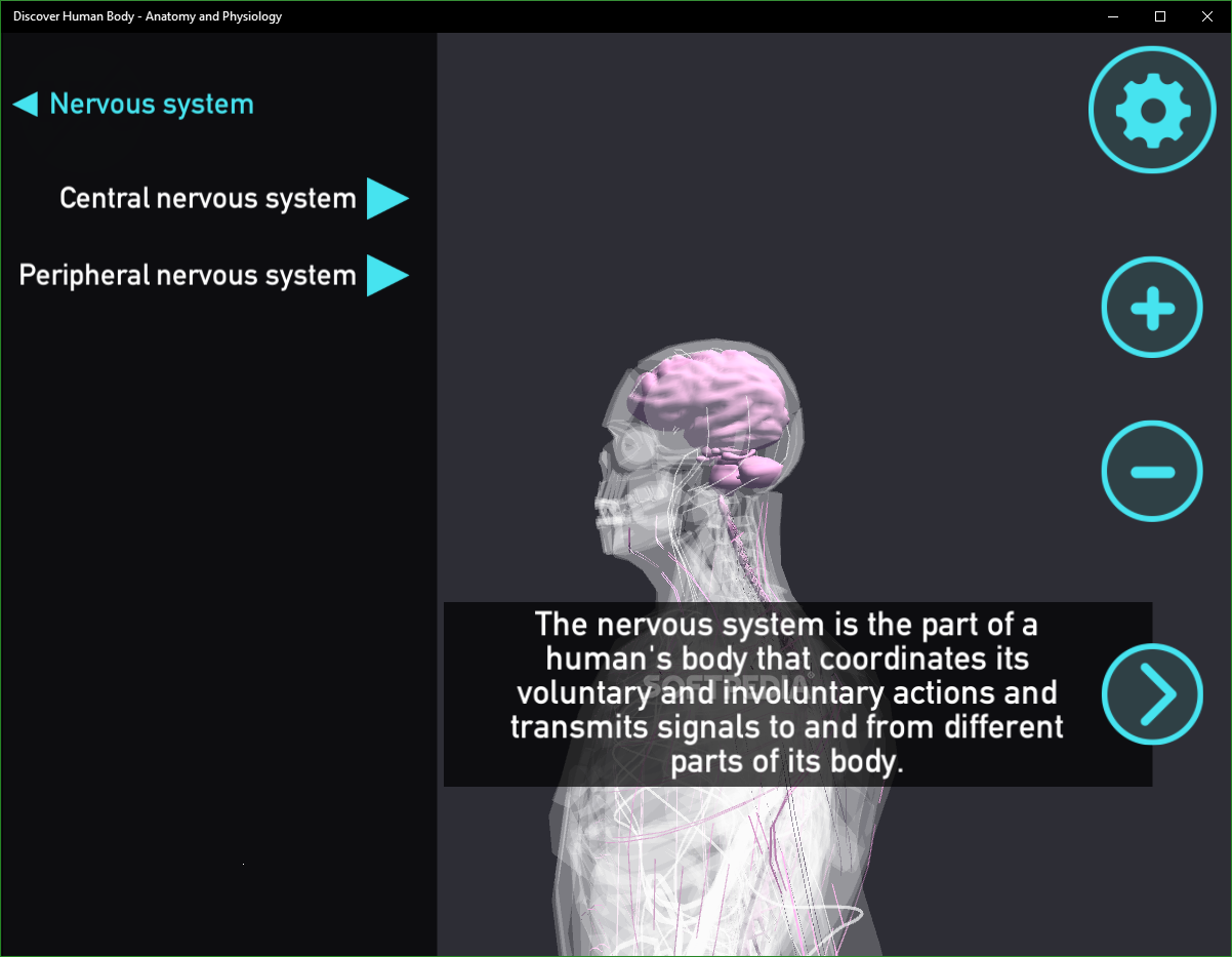 Download Discover Human Body - Anatomy and Physiology 2 0 1 0