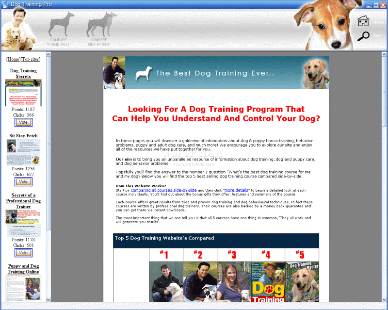Do You Get Paid For Training A Guide Dog