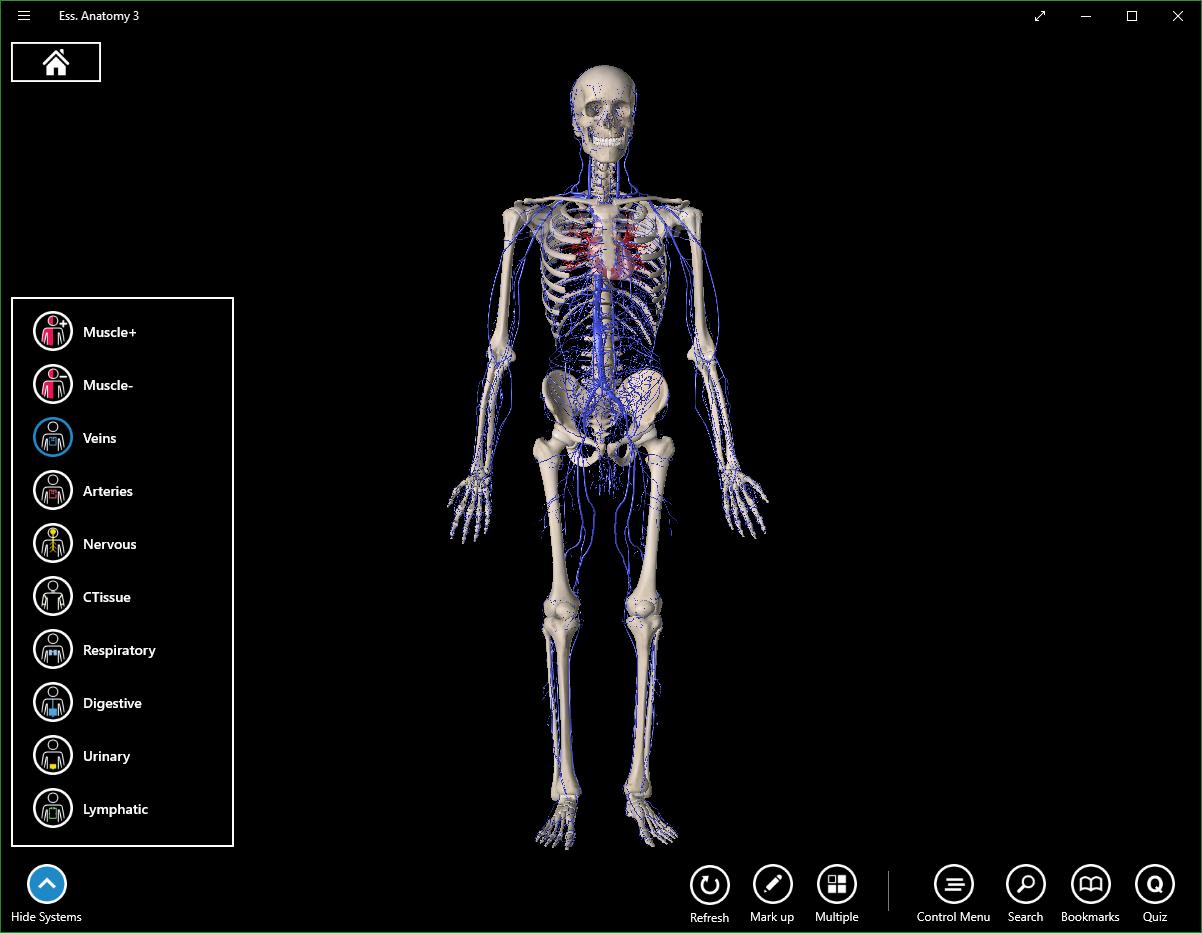 Download Essential Anatomy 3 3 3 2 0