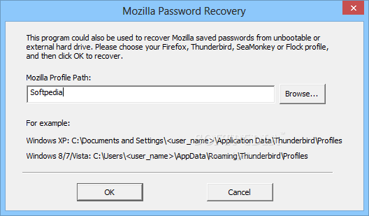Firefox Password Recovery screenshot 2 - From this menu users will have the