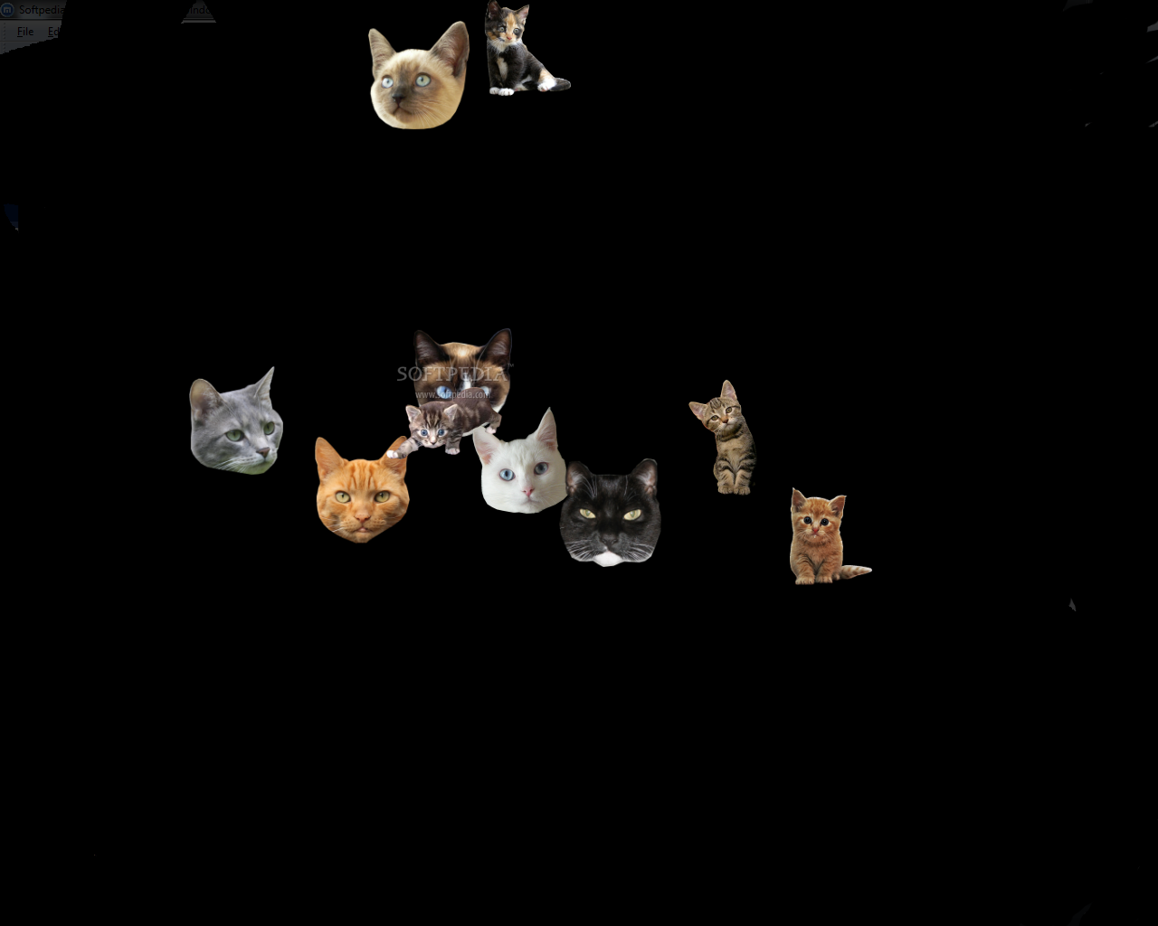 Download Flying Cats 1 0