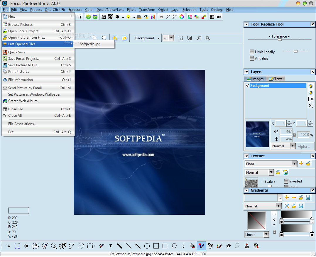 download Developing Statistical Software