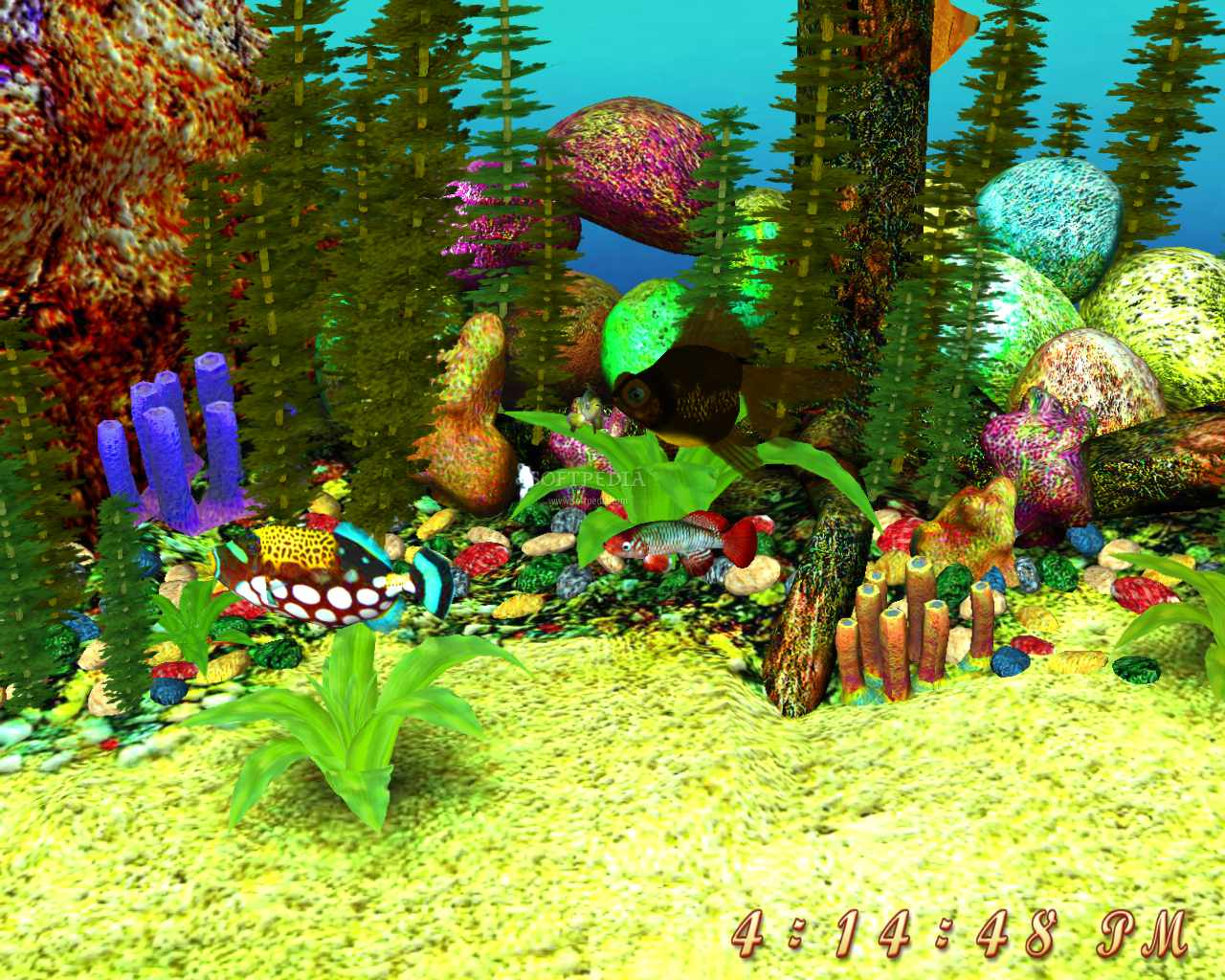 Free 3d Screensavers Free D Aquarium Screensaver