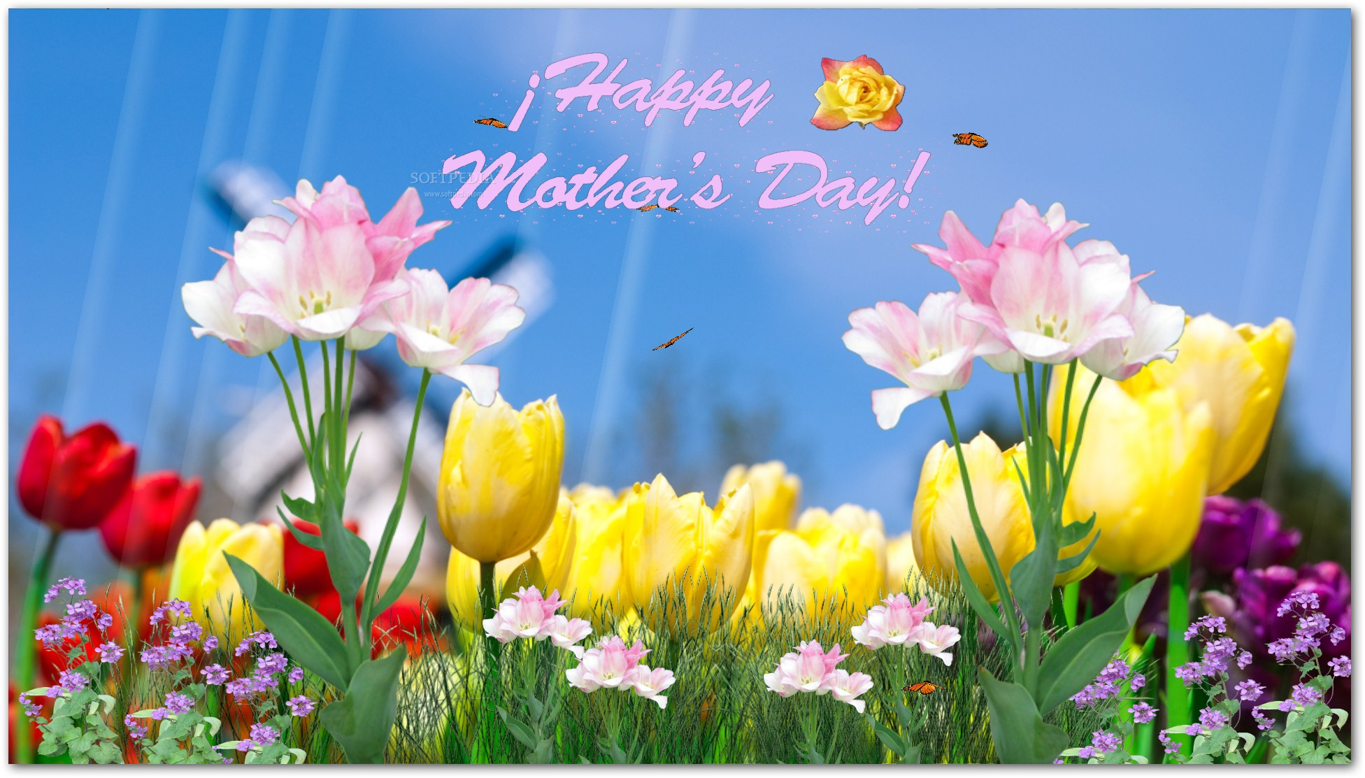 Download Happy Mothers Day Screensaver 1.0