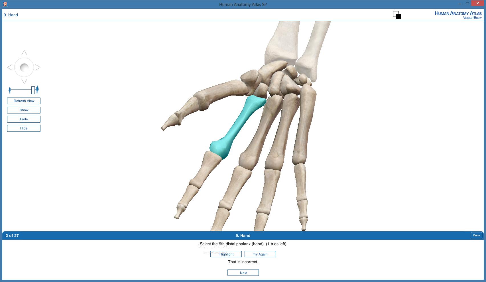 Download Human Anatomy Atlas Sp 20183