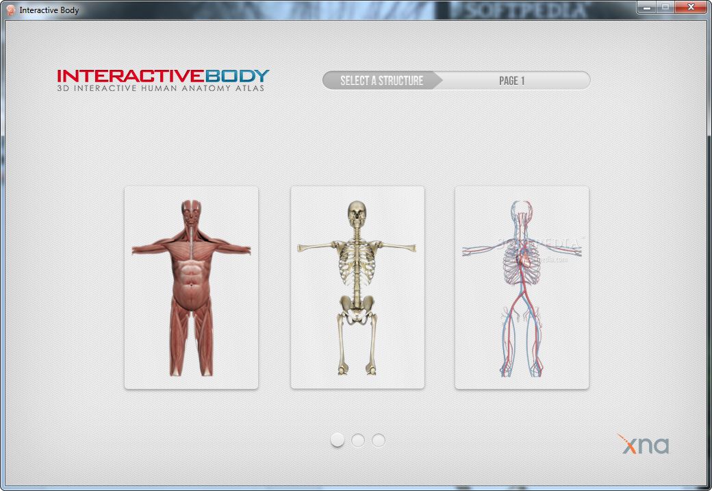 Download Interactive Body 10