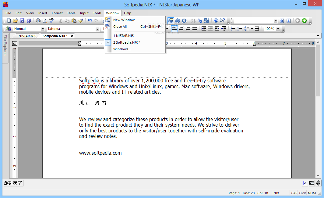 how to write in japanese on windows 10