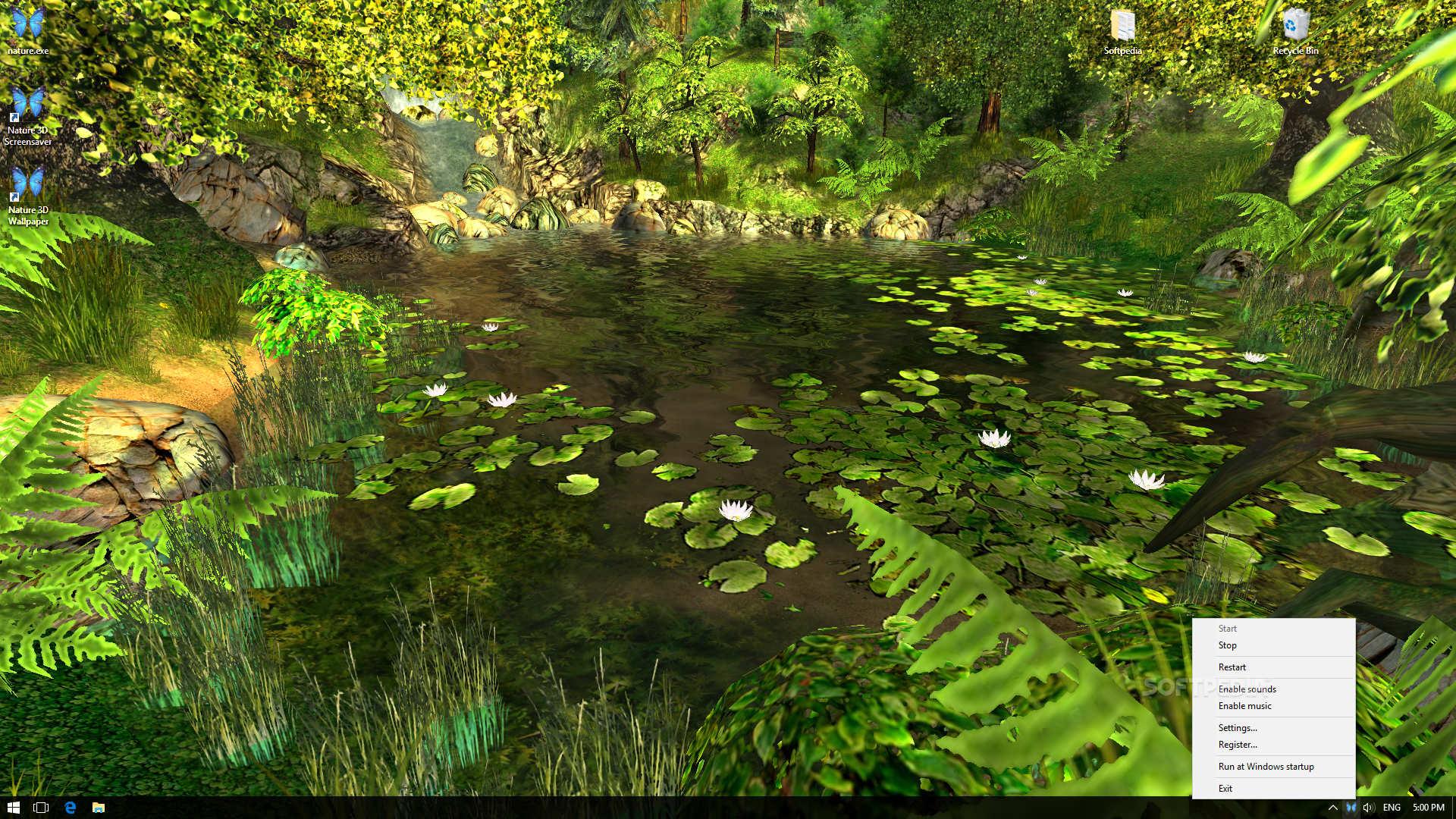 Nature 3D Screensaver Setup Free - King Cameran Foundation