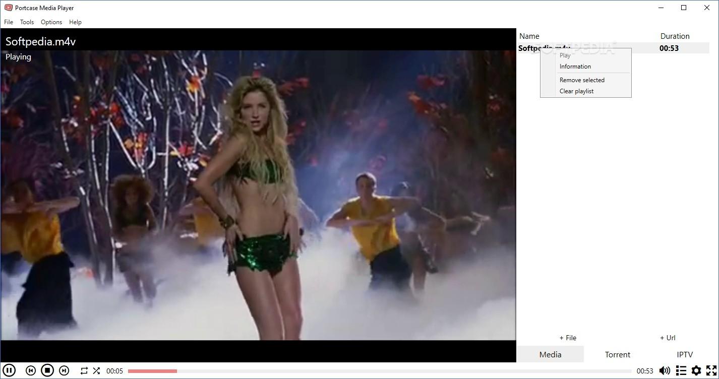 Microsoft windows xp video decoder checkup utility, windows xp.