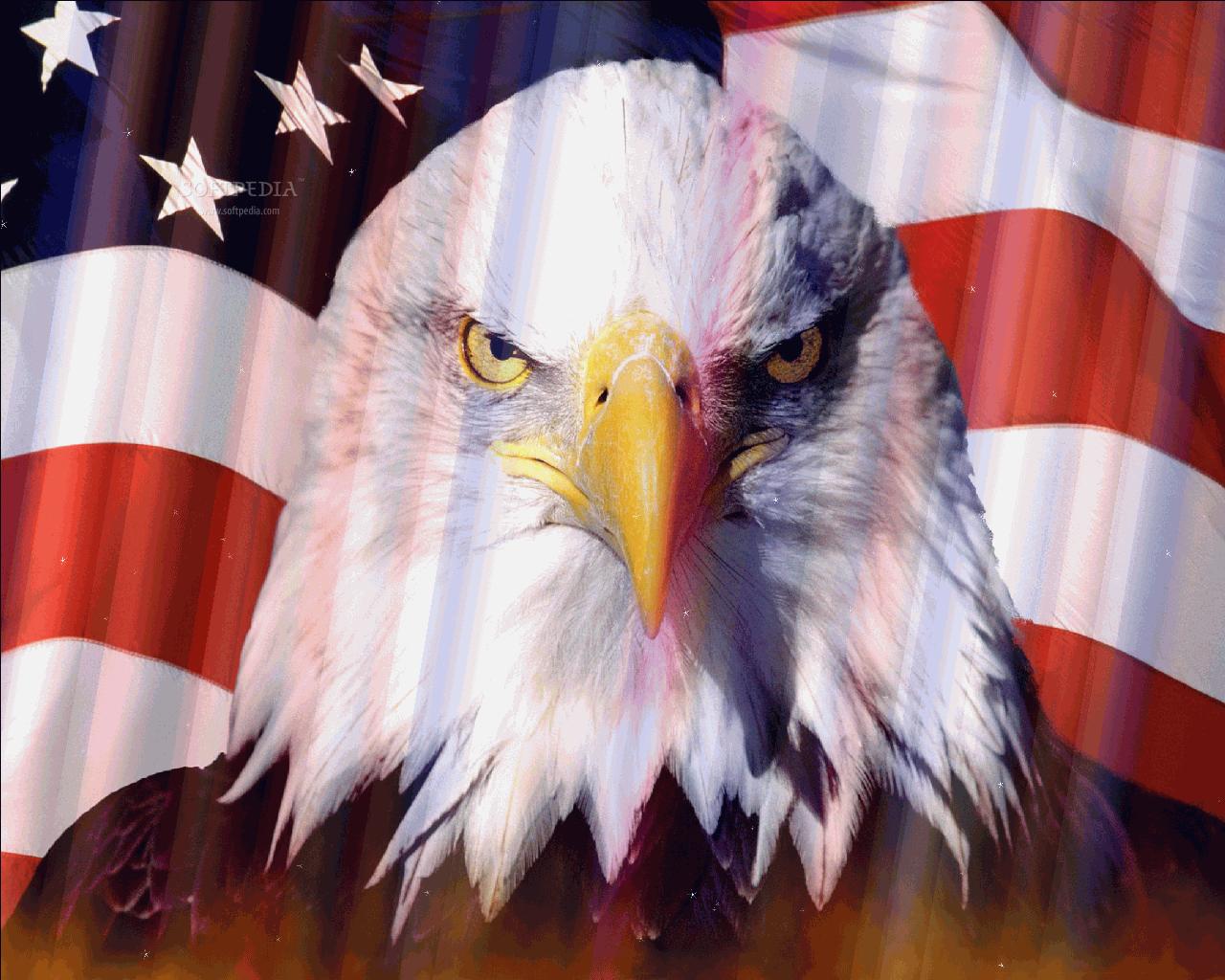 download american flag screensaver 1 0