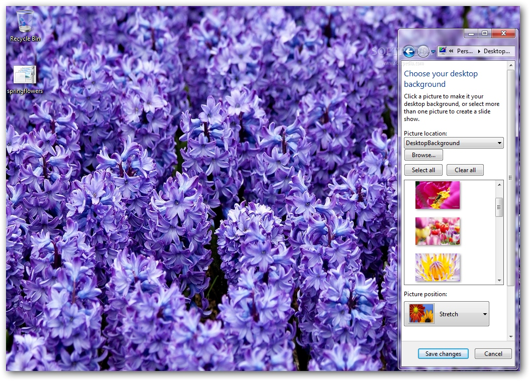 Download Spring Flowers Windows 7 Theme 100
