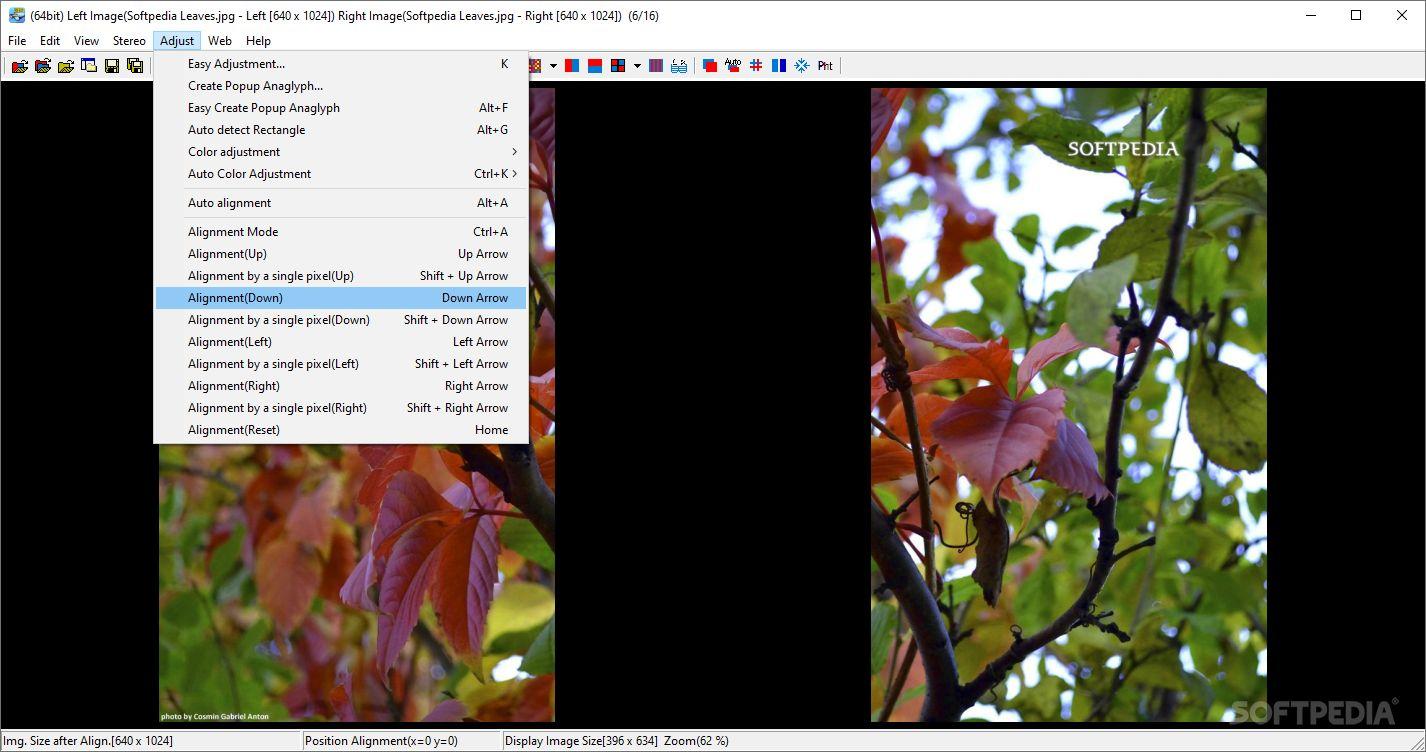 Download StereoPhoto Maker 5 30 / 5 30b Beta