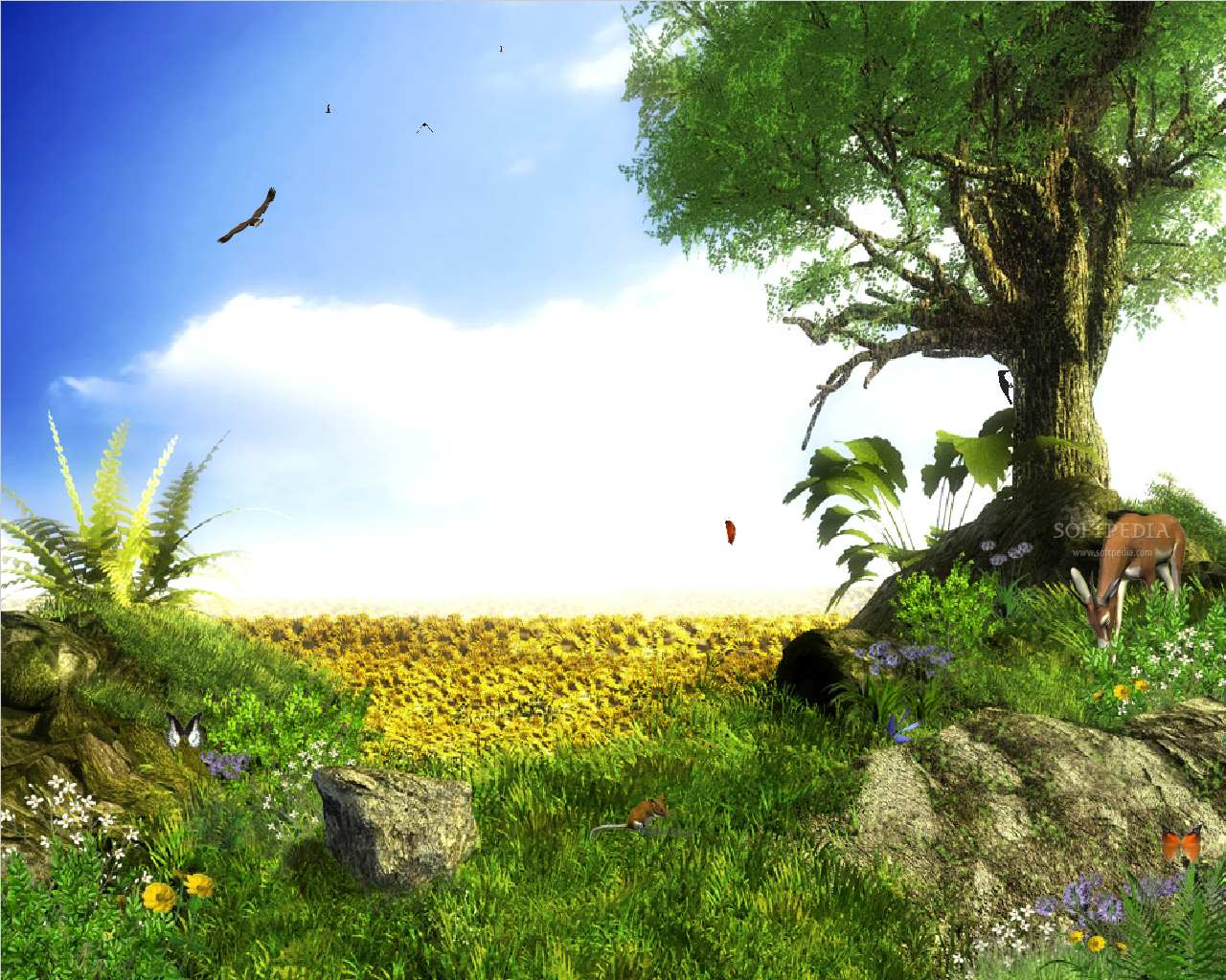 Animated Wallpaper. Of less than one of free Animation pictures,
