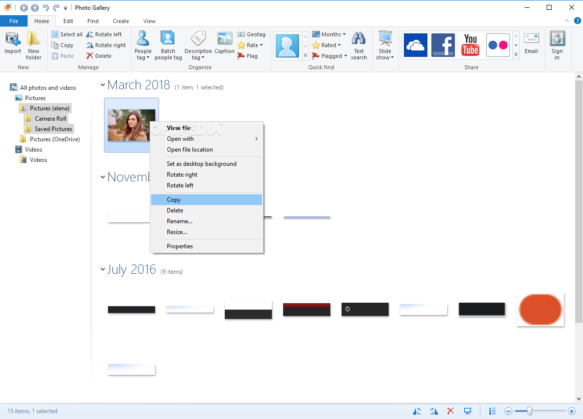 Download Windows Photo Gallery 2012 (16 4 3528 331)