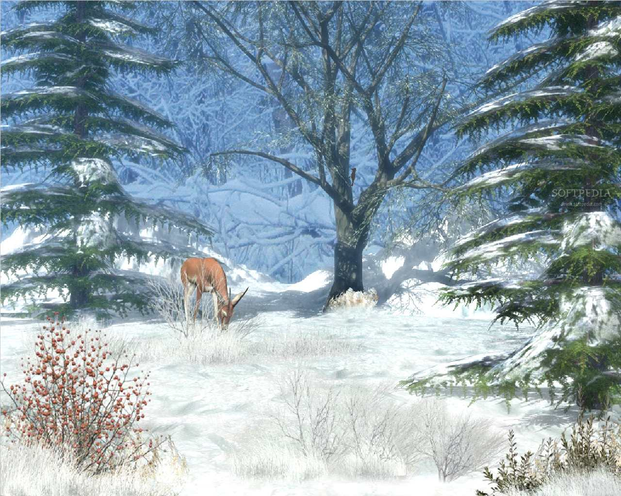 3d winter scenes wallpaper - photo #32