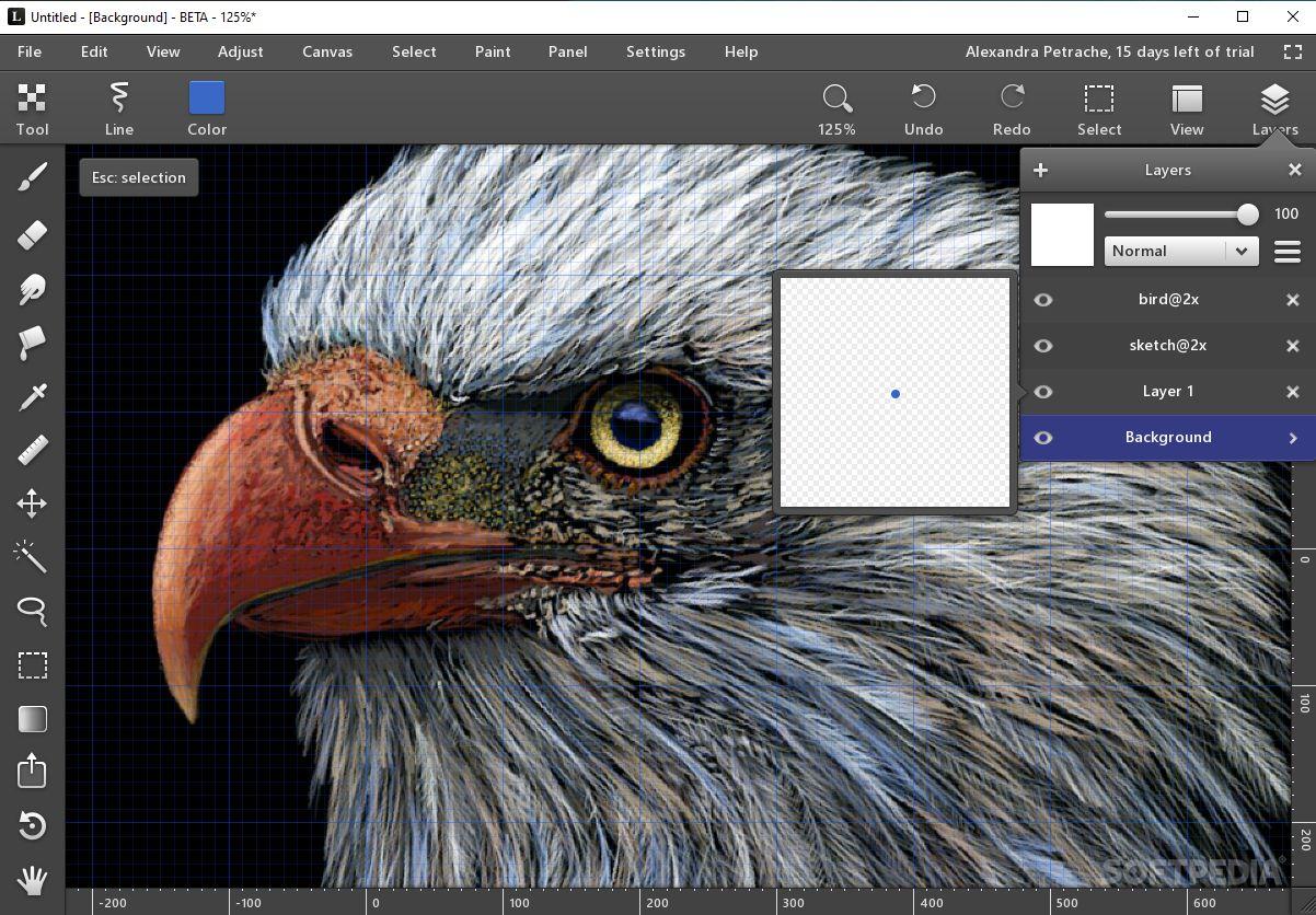 Adobe Photoshop CS3 - 30 Day Free Trial - …