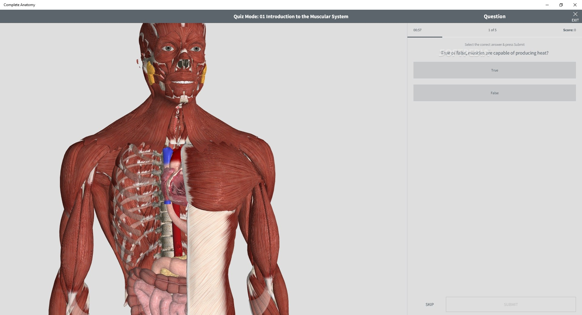 Download Complete Anatomy 2019 5 0 6 0
