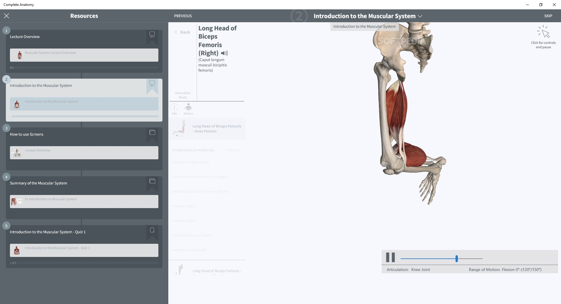 Download Complete Anatomy 2019 5 0 9 0