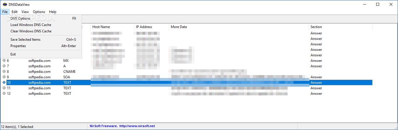 Download DNSDataView 1 56