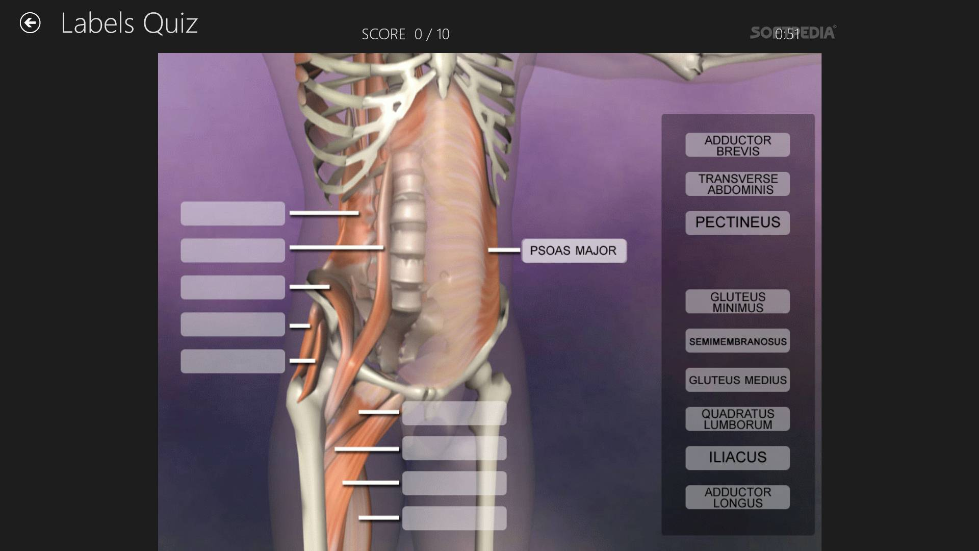 Download Muscle and Bone Anatomy 3D for Windows 10 1.0.0.9
