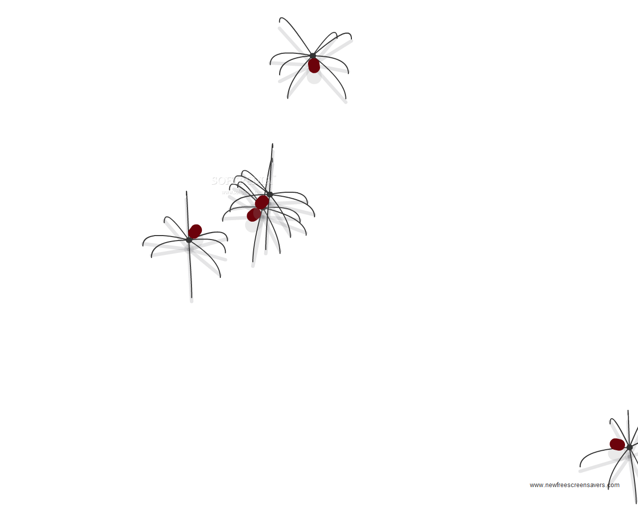Download nfsseveralspiders - Moving spider desktop ...