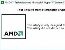 Download AMD Virtualization Technology and Microsoft Hyper-V System