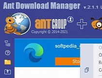 ant download manager vs idm