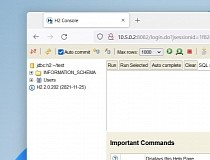 H2 DATABASE ODBC DRIVER FOR MAC DOWNLOAD