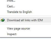 idm integration module 6.20 download